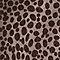 Dot Leopard